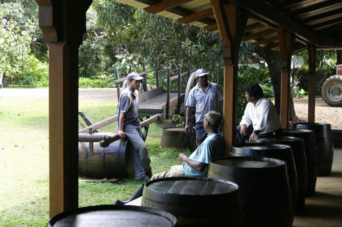 Distillerie di Rum a Mauritius