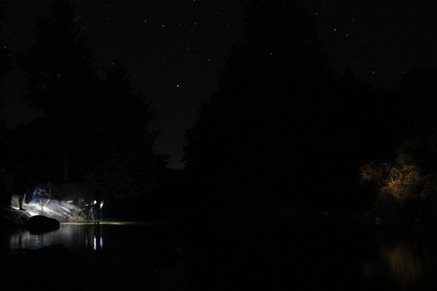 La pesca notturna delle anguille
