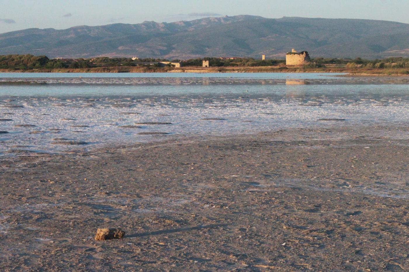 Sardegna Da Alghero ad Oristano stagno di sale e porcu