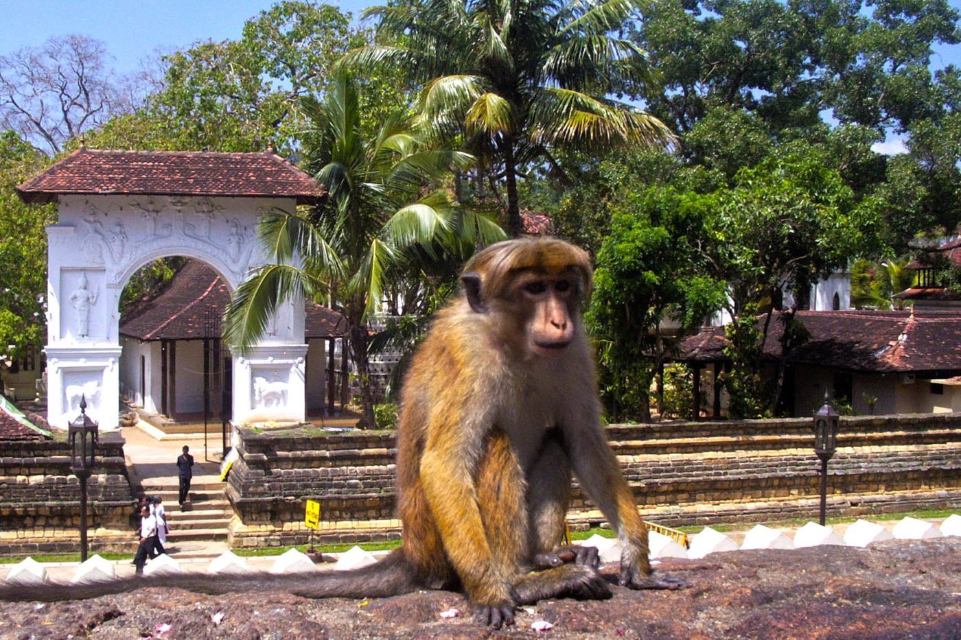 Sri Lanka Kandi